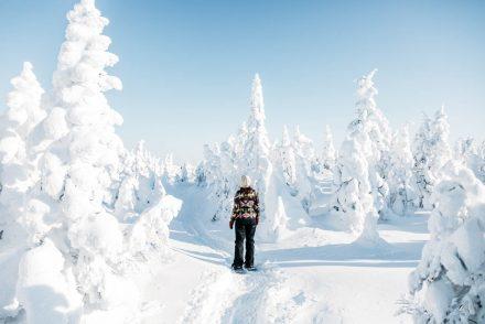 randonner en hiver au Québec aux monts-valin