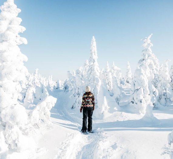 Québec en hiver — les fantômes de neige du Parc national des Monts-Valin