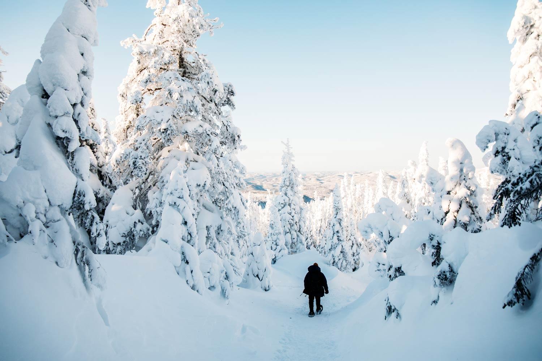 voyager au Québec en hiver blog