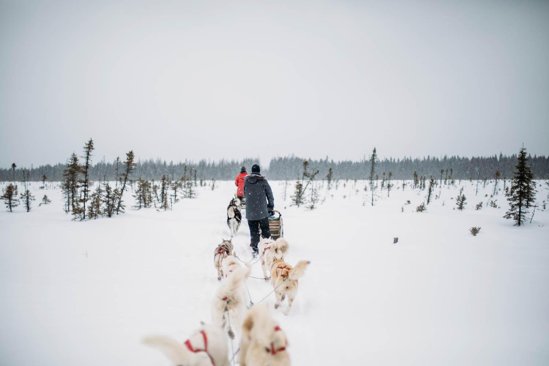où faire du traineau à chiens au Québec ?