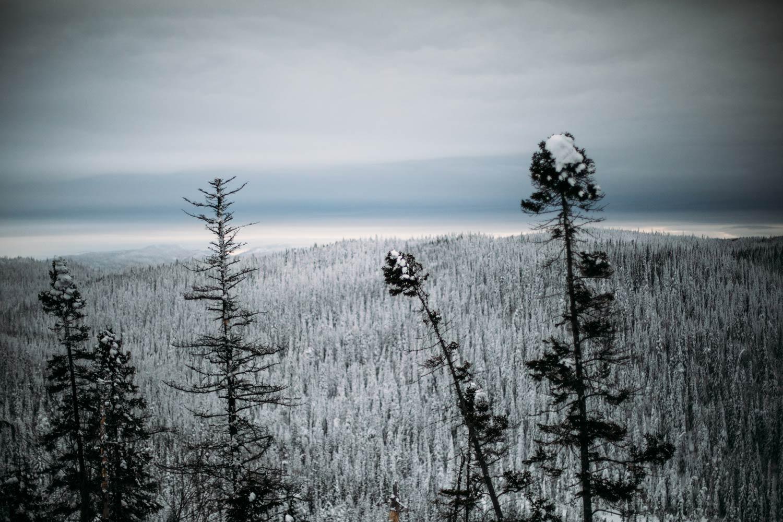 paysages féériques du Québec en hiver