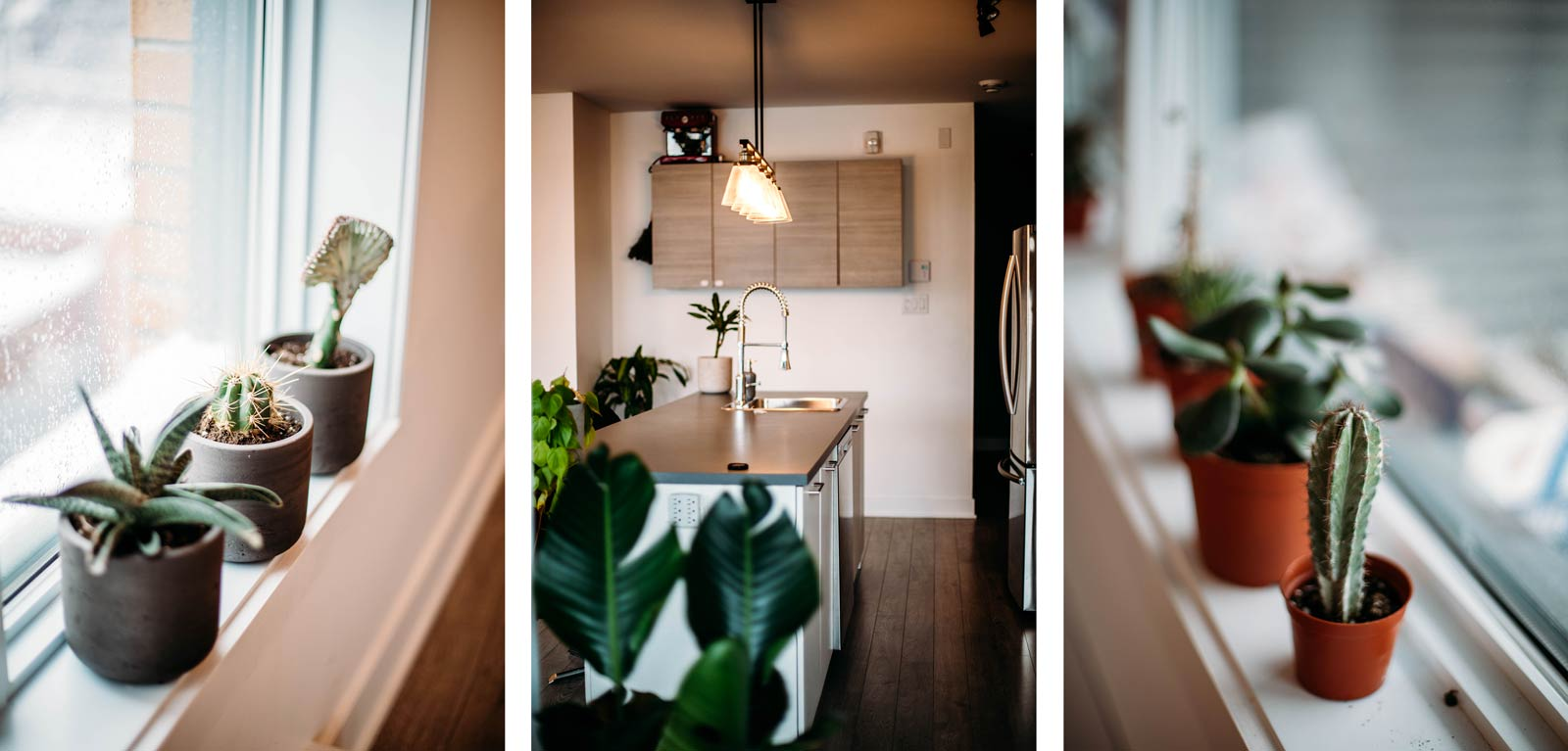 louer appartement par une conciergerie