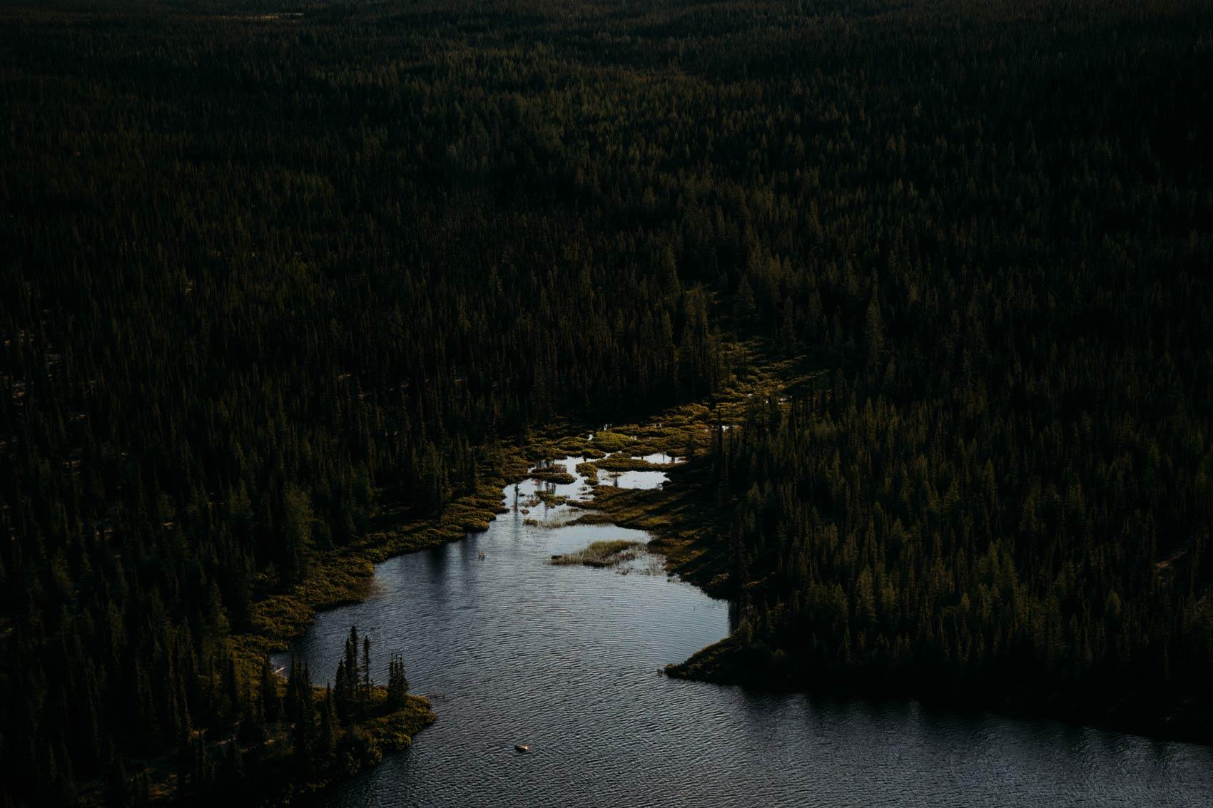 forêt boréale taiga baie-james