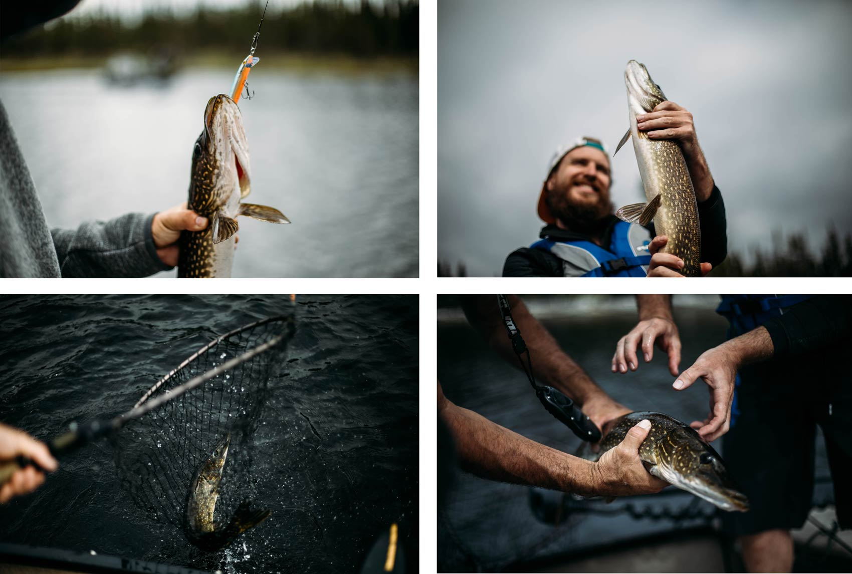 pêche pourvoirie mirage route transtaiga