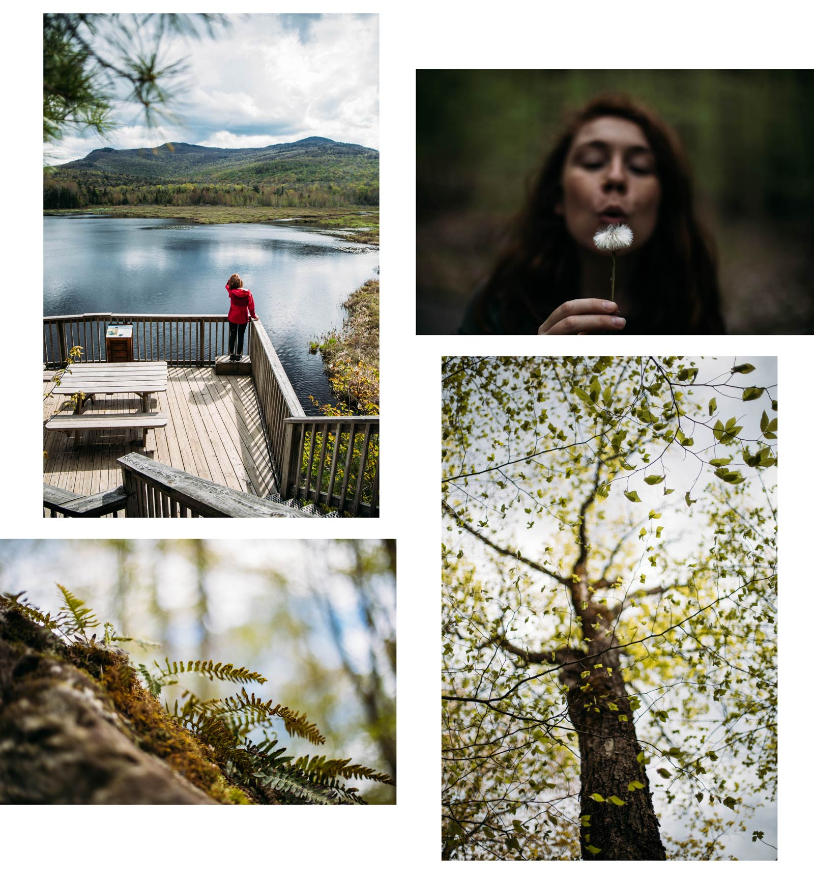 randonner parc national Mont Orford