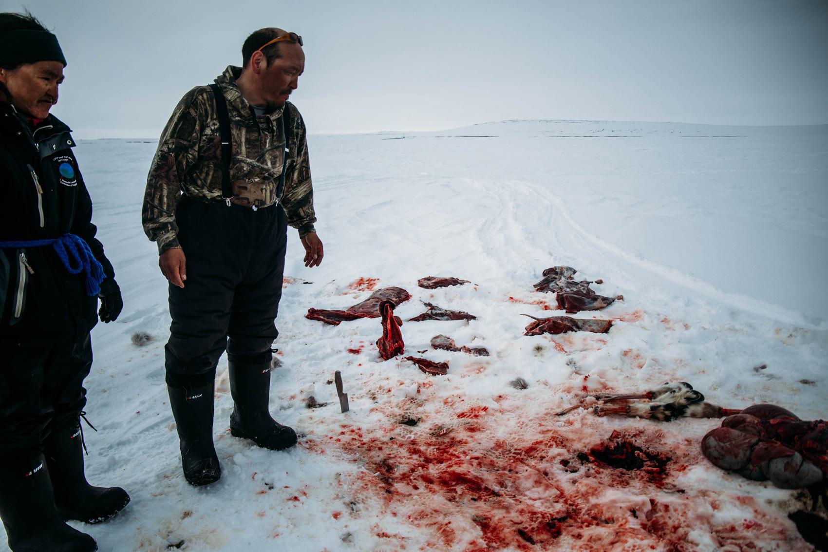 rencontrer le peuple inuit au Nunavik