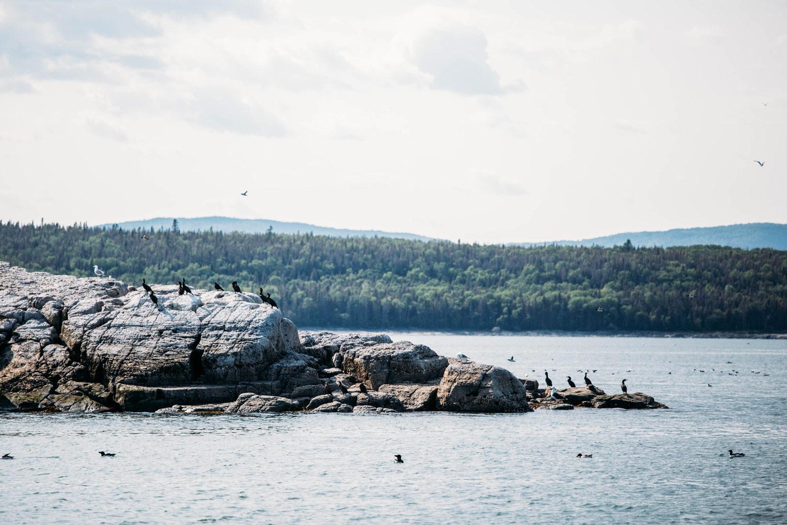 les iles du fleuve saint-laurent au Québec
