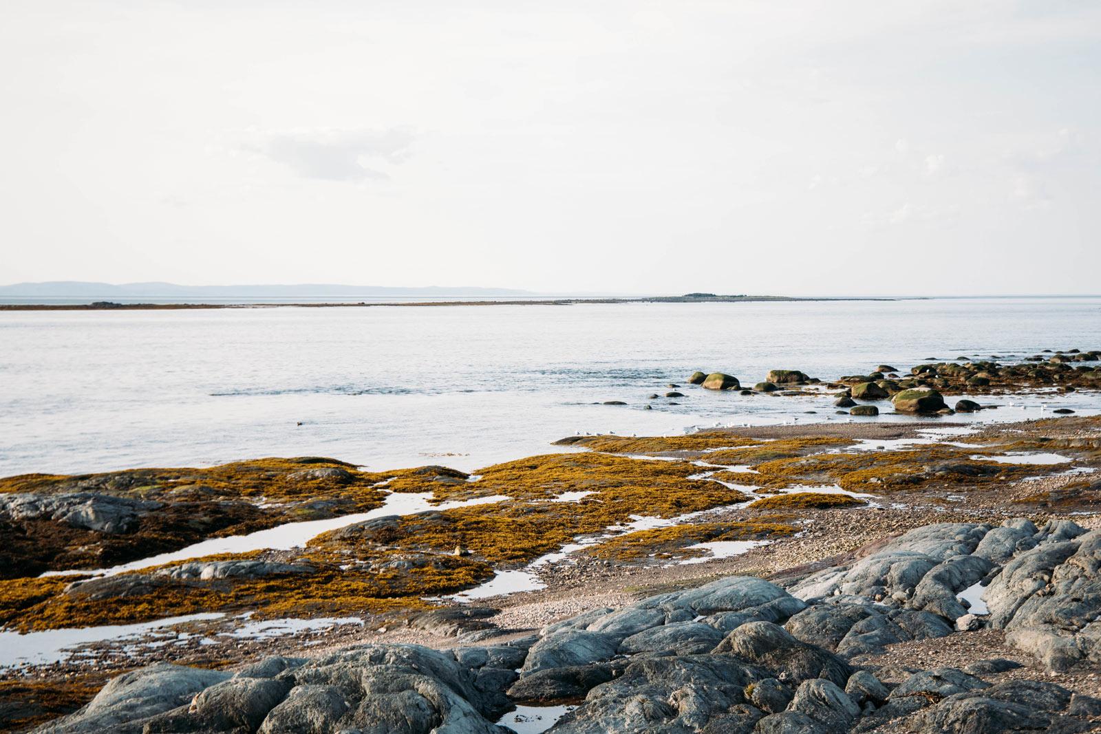 paysages marins ile aux lièvres Duvetnor