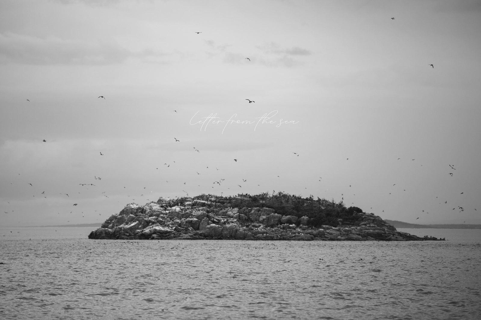 voyager dans les iles du Saint-Laurent