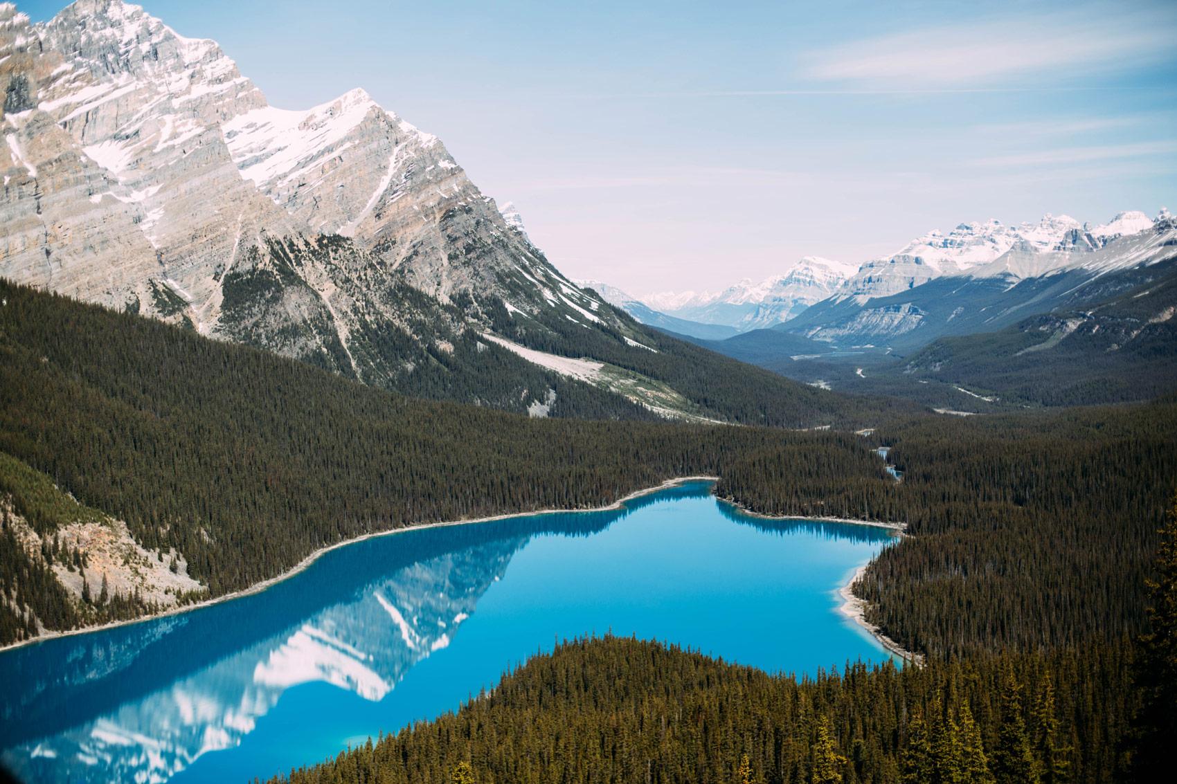 magnifique lac peyto parc national banff alberta