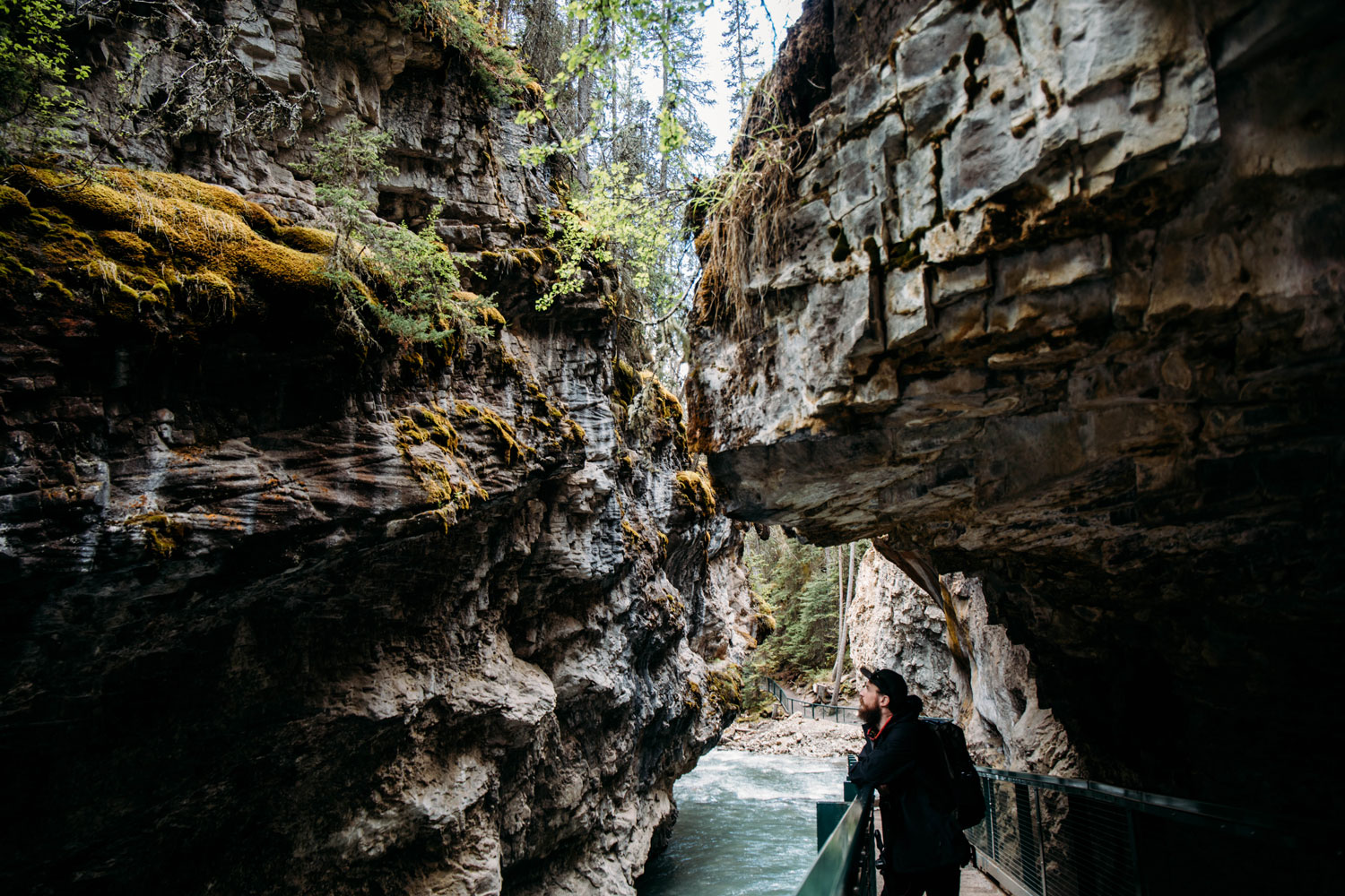Johnston Canyon Rocheuses Canadiennes