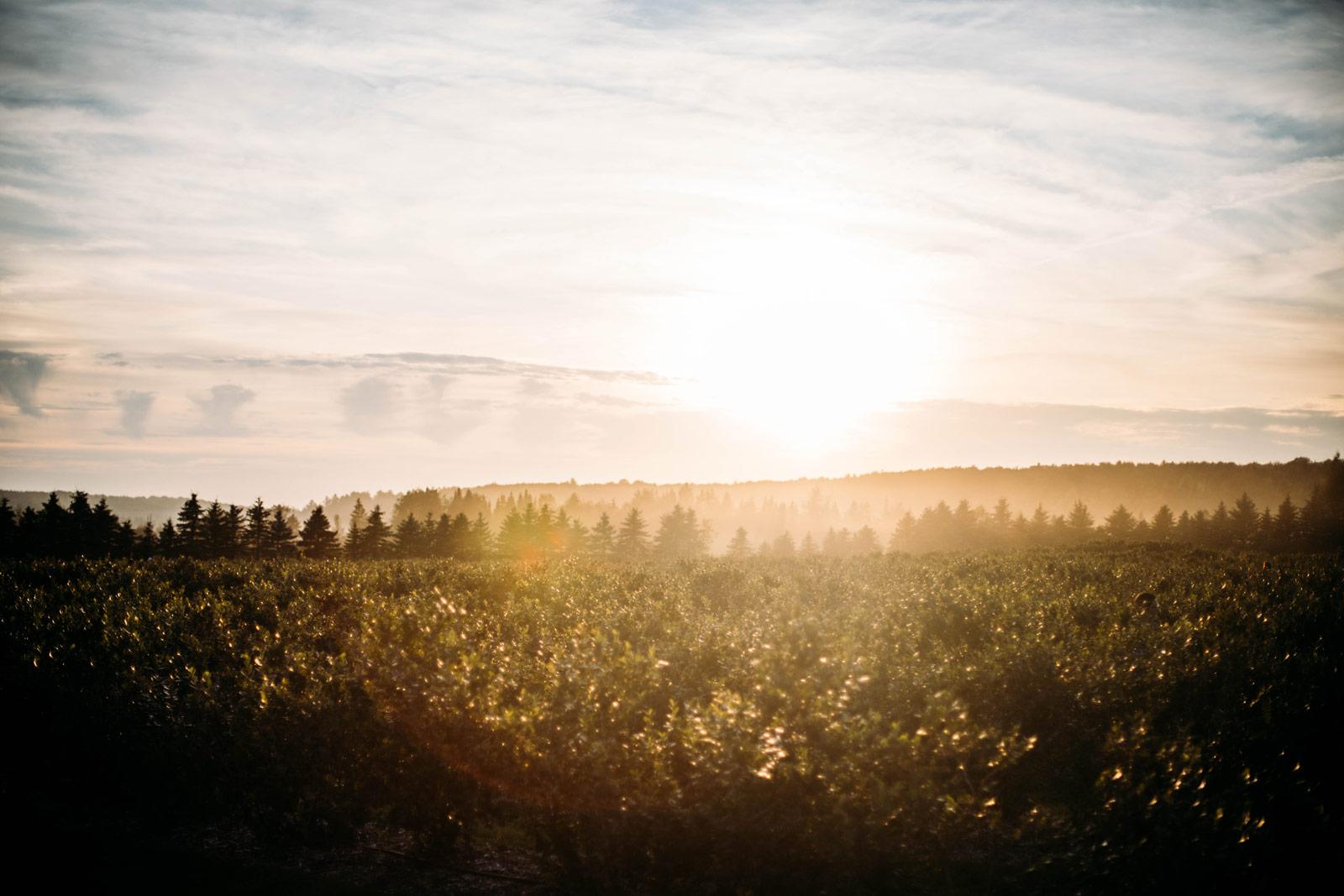 paysages de la Beauce en Chaudière-Appalaches