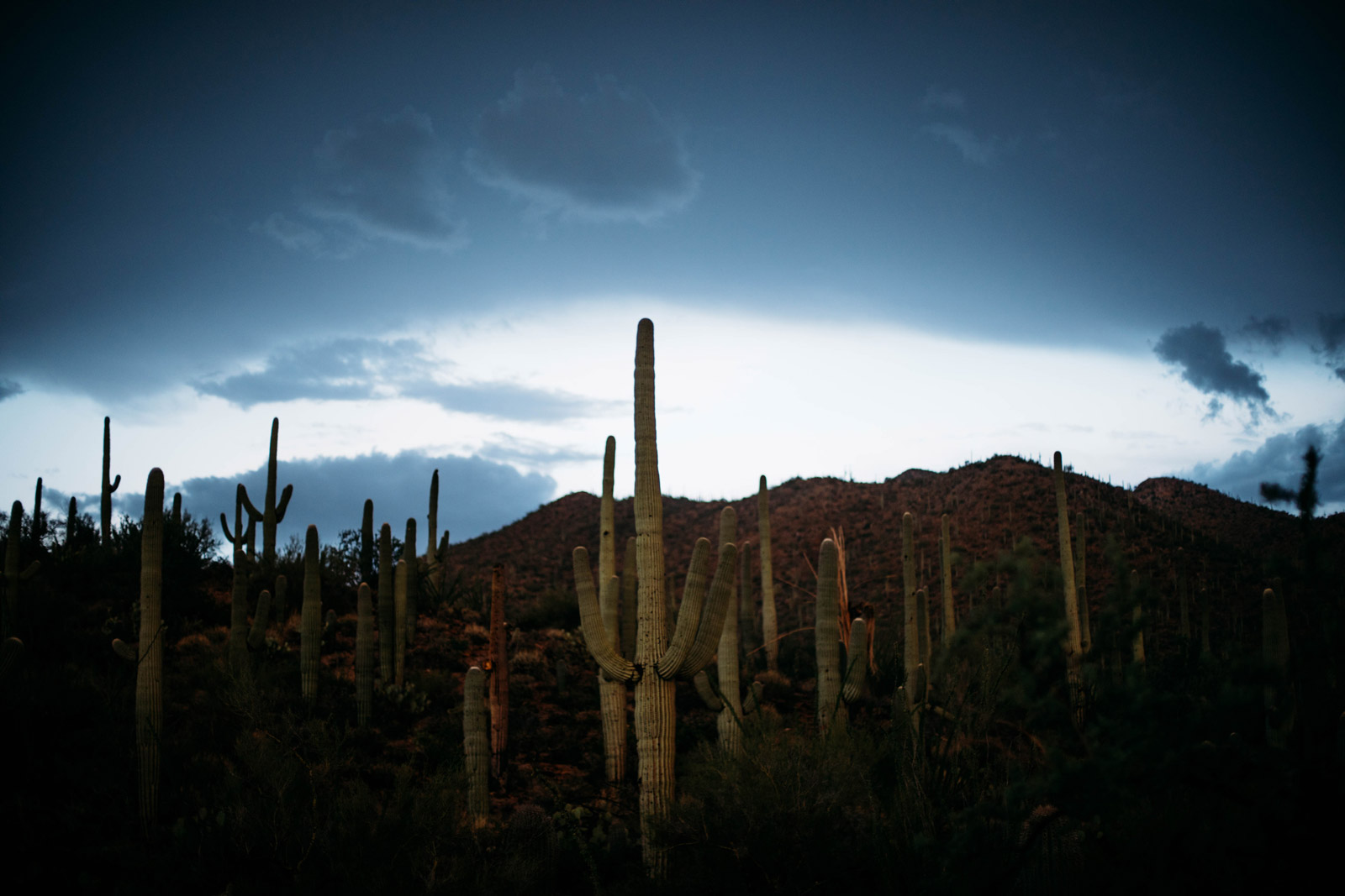 road trip en Arizona et a Tucson