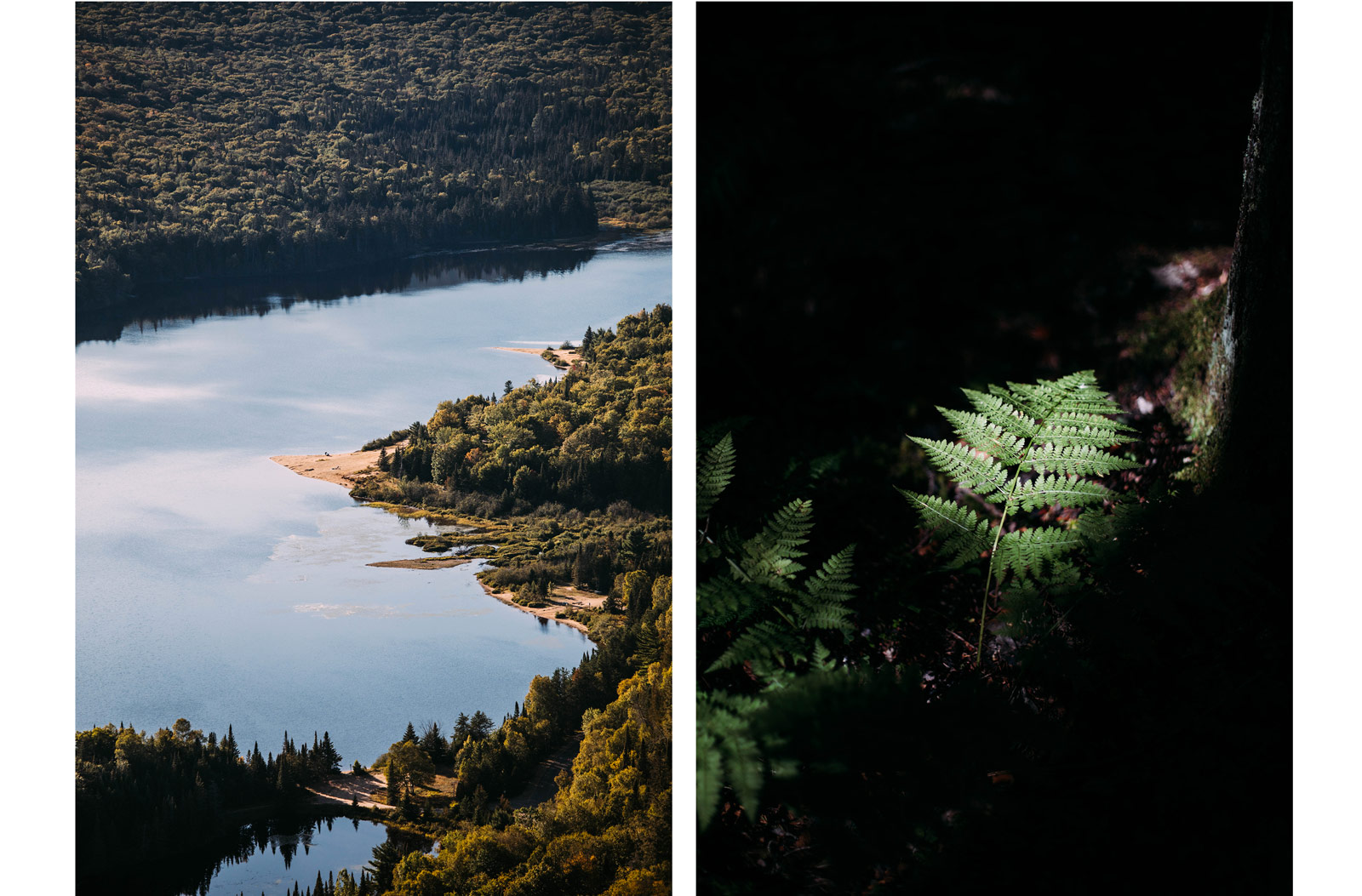 sentiers de randonnée parc national Mont-Tremblant