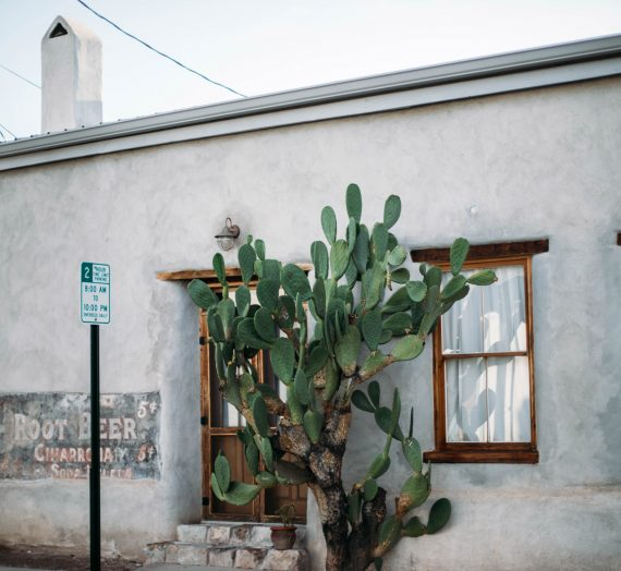 City Guide Tucson  — l'héritage mexicain du sud de l'Arizona
