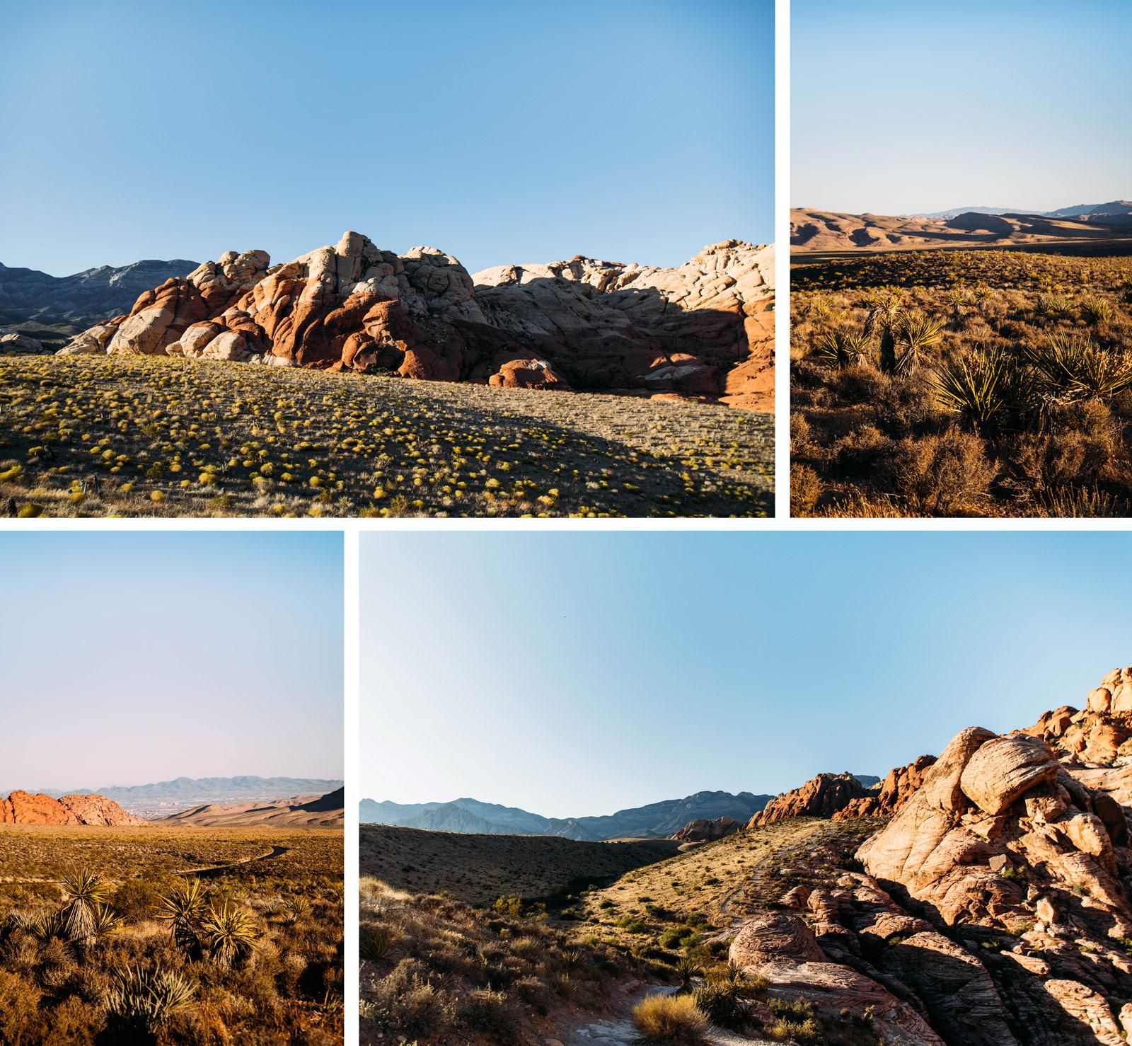 visiter les environs de Las Vegas et red rock canyon
