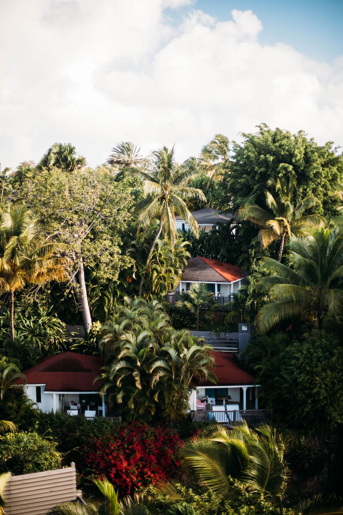 bungalows la Toubana hotel guadeloupe