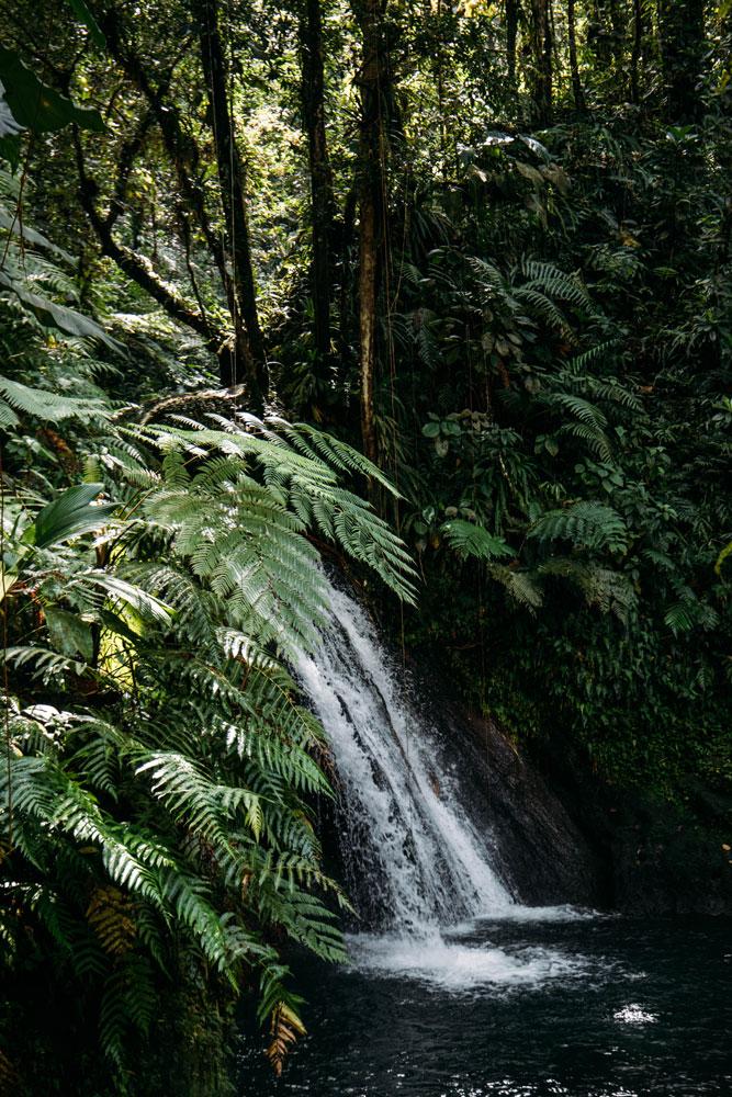cascade aux écrevisses parc national Guadeloupe