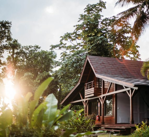 Ecolodge Guadeloupe — l'exotisme du jardin Malanga