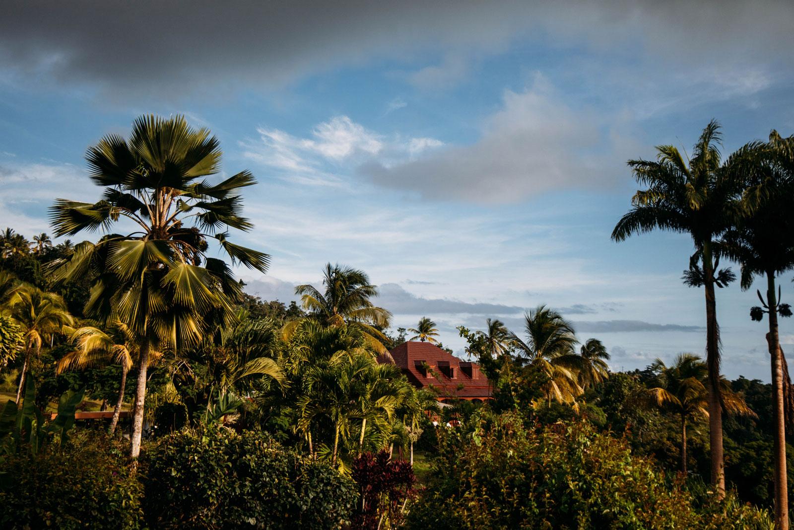 écolodge jardin malanga Guadeloupe