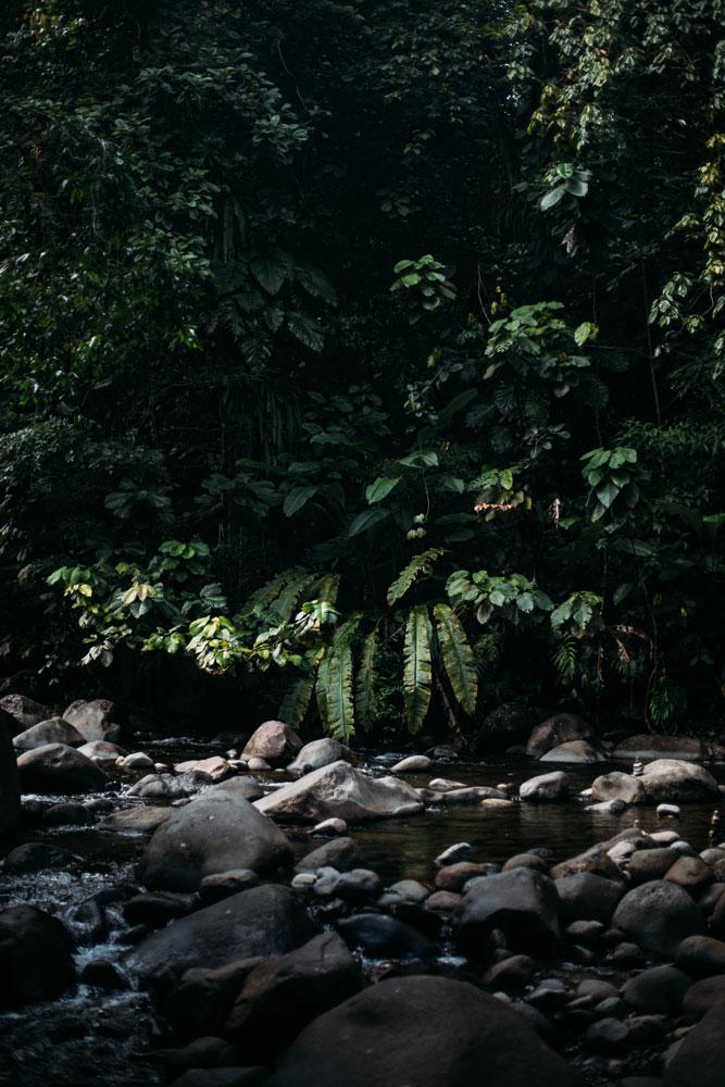 plus belles cascades de Guadeloupe