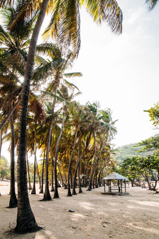 que voir en Guadeloupe archipel des saintes