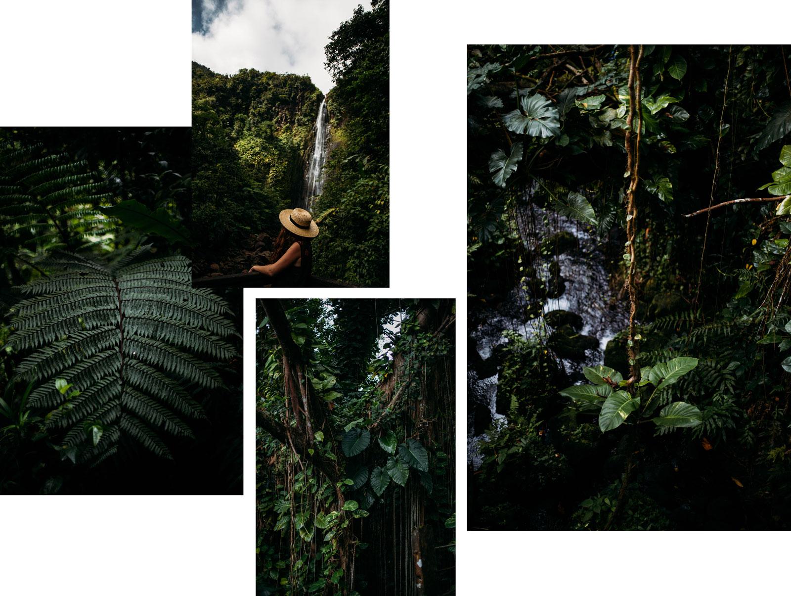 voir le parc national de Guadeloupe route de la traversée