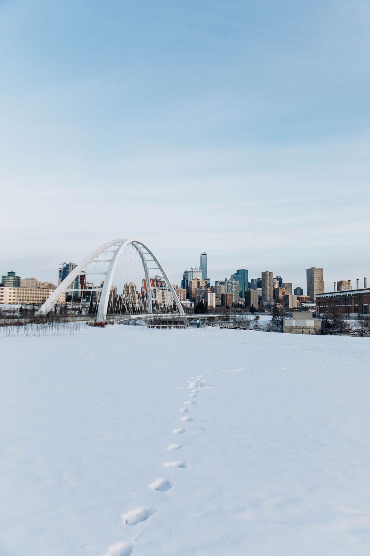 que faire Edmonton hiver