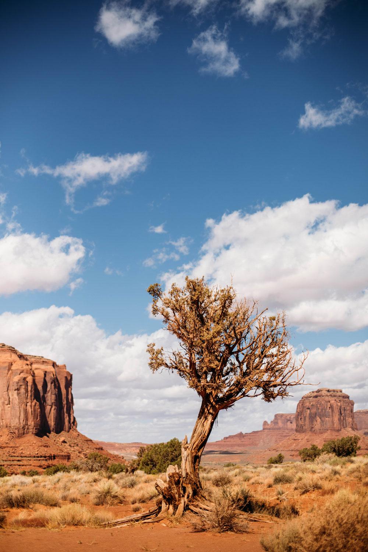 road-trip-dans-l-ouest-americain-blog