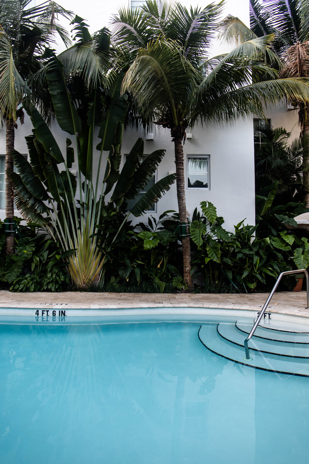 hotel-avec-piscine-miami-beach