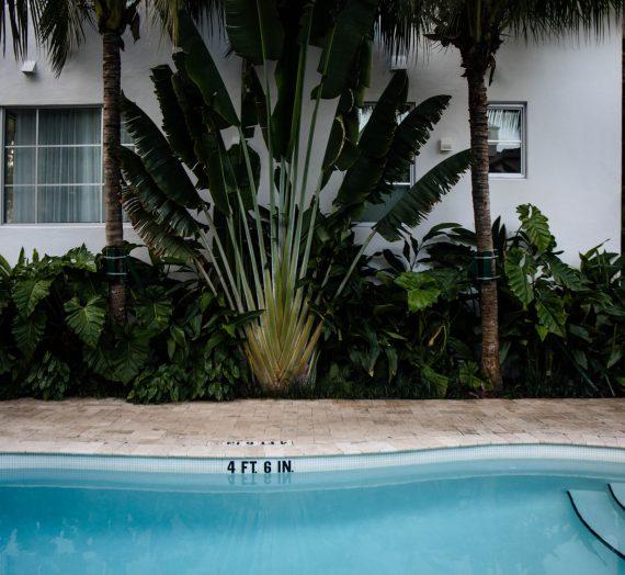 Palihouse Miami Beach — un boutique hôtel très 70's et chic