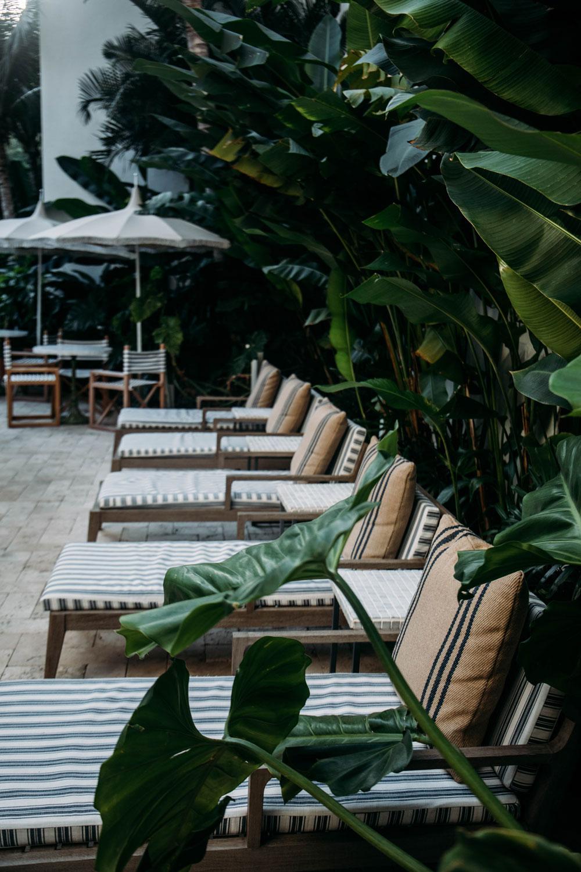 terrasse-palihouse