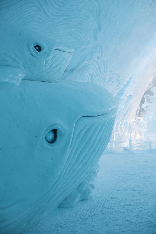 sculpture-glace-baleine
