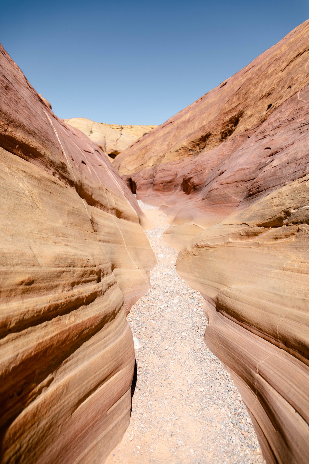 rando pink canyon valley of fire