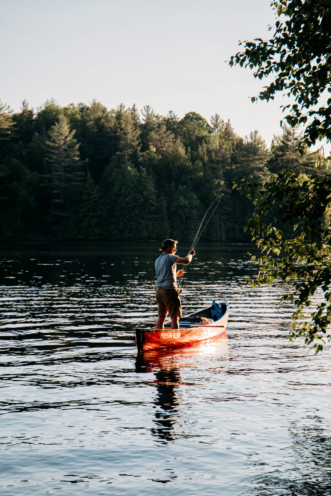 activité-pêche-poisson-blanc
