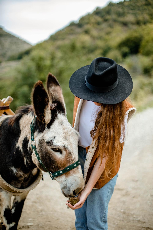 randonner avec un âne lozère