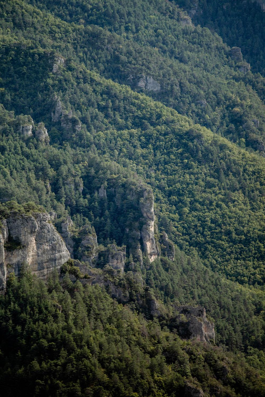 randonner gorges du tarn occitanie
