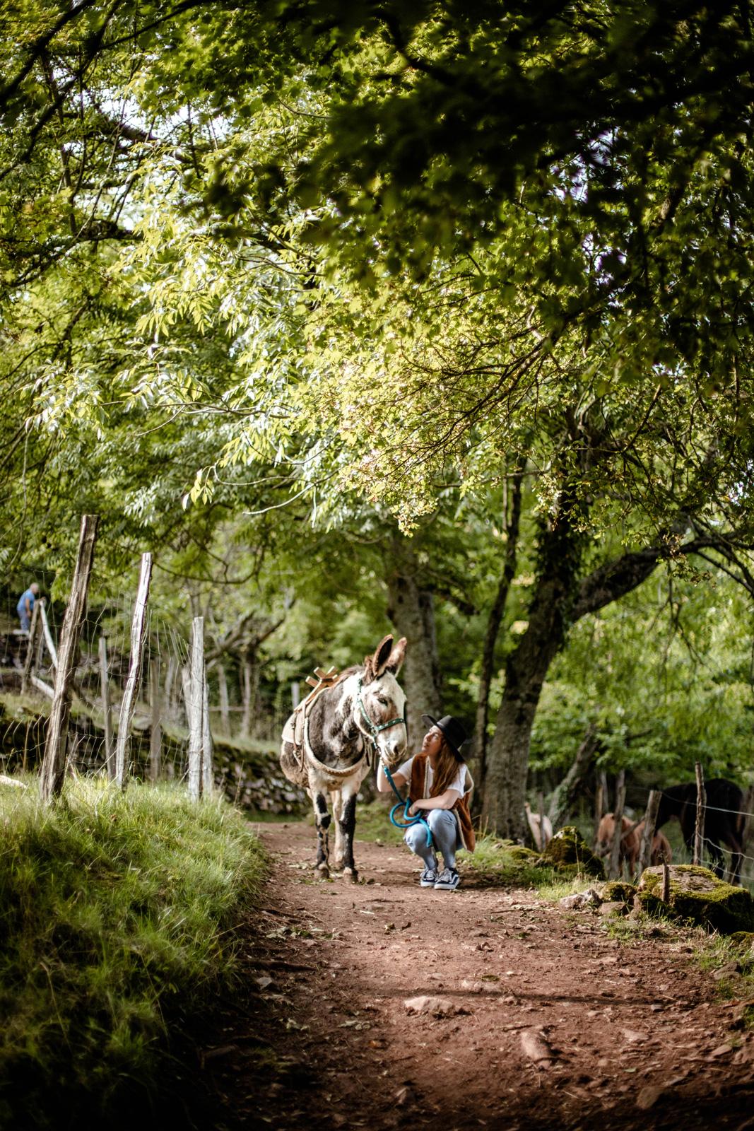 séjour nature randonner en lozère
