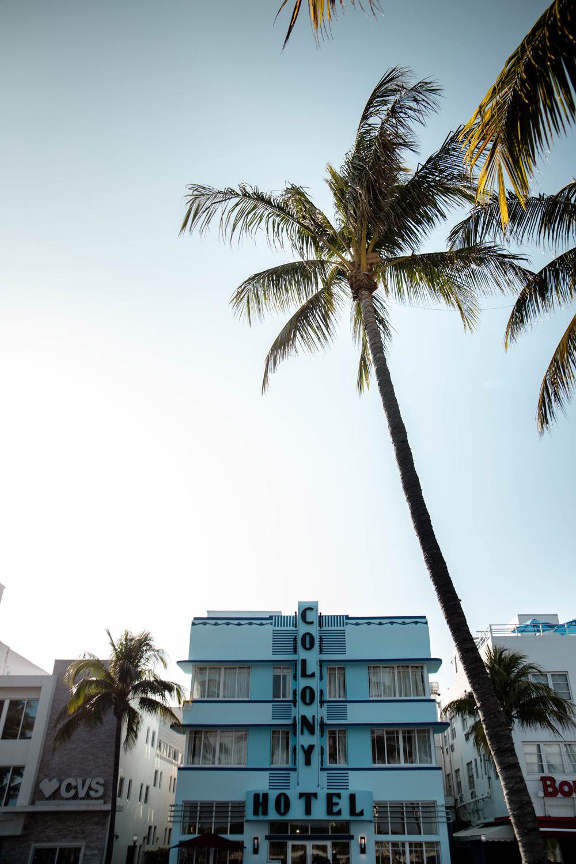 ocean drive : avenue mythique de South Beach
