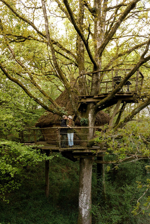 dormir dans les arbres coutances hotel insolite