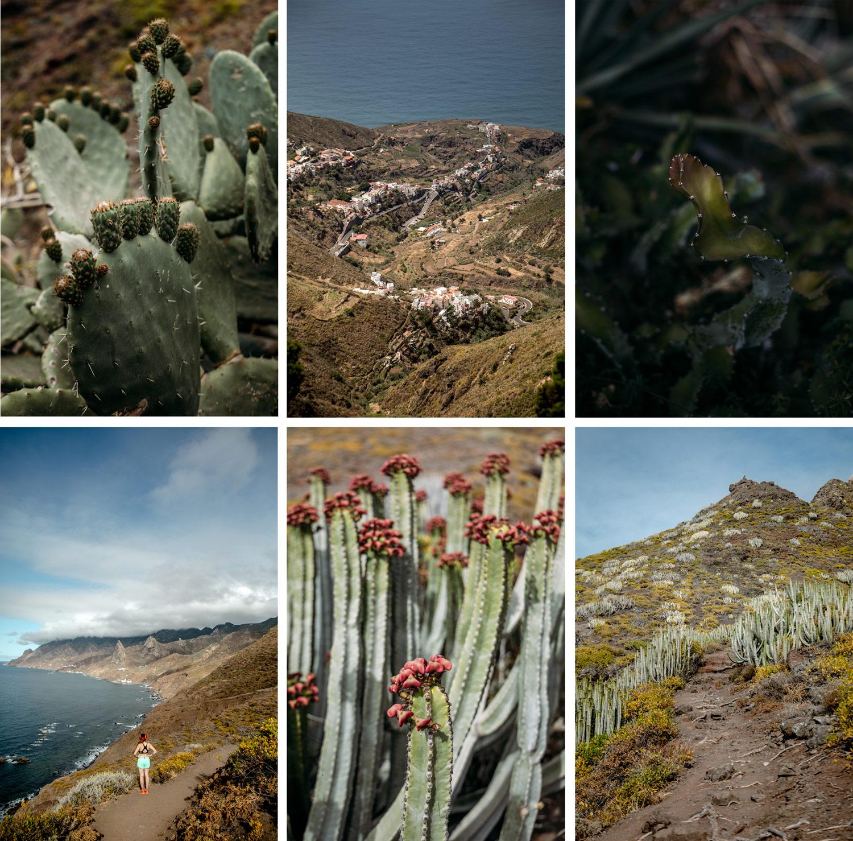 découverte du parc rural d'Anaga Tenerife
