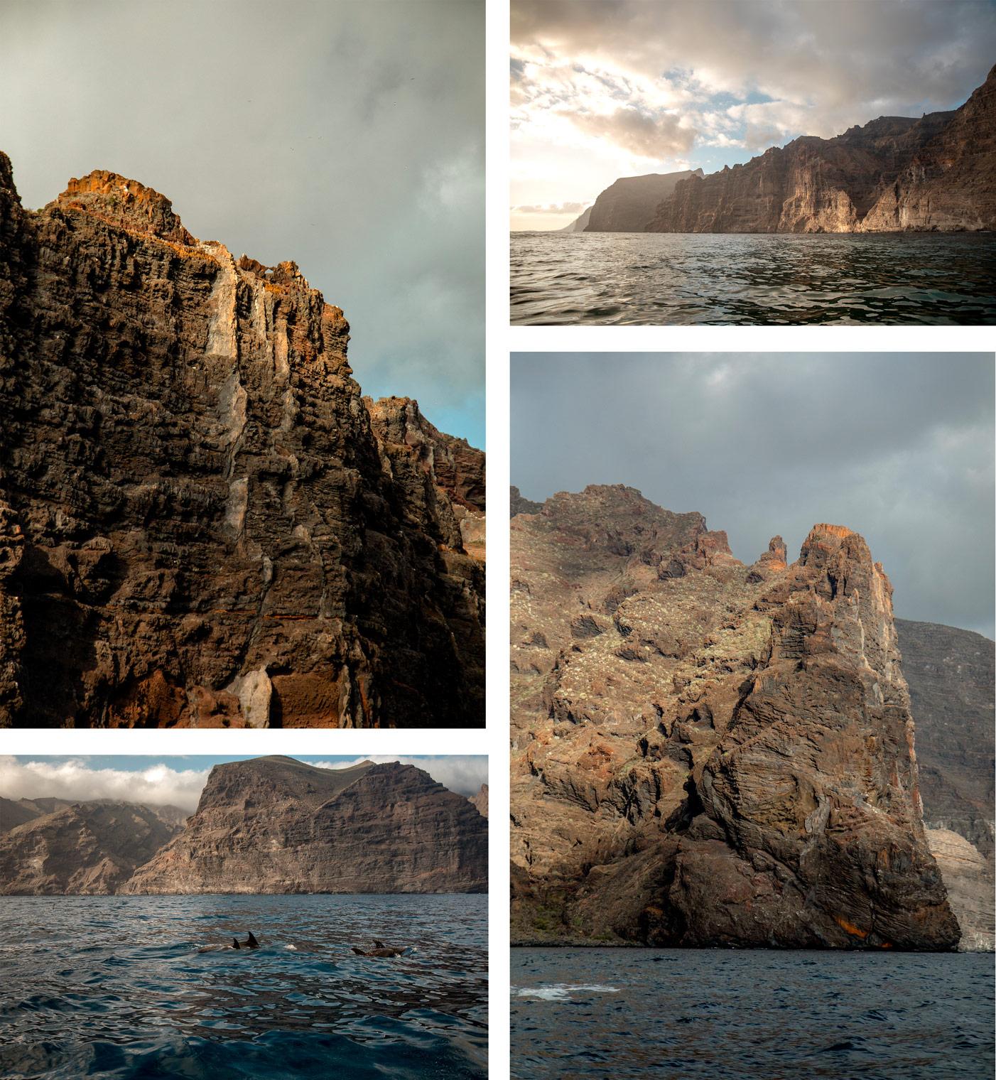 excursion dauphin aux falaises de los gigantes à Tenerife
