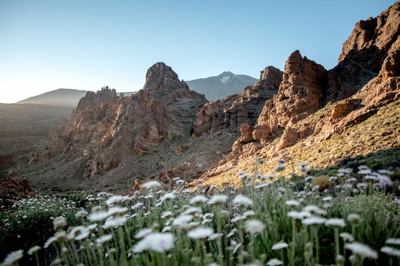 roques de garcia Teide