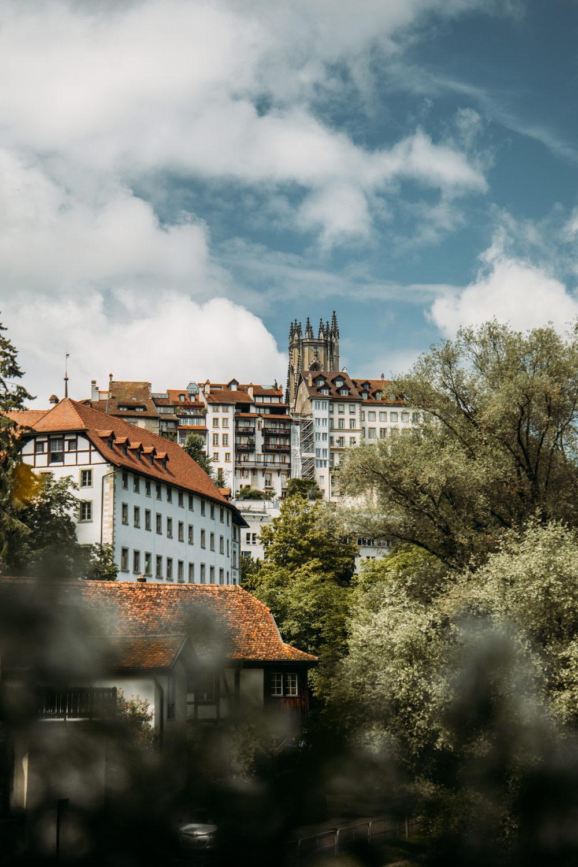 le bourg et la cathédrale saint-nicolas de Fribourg