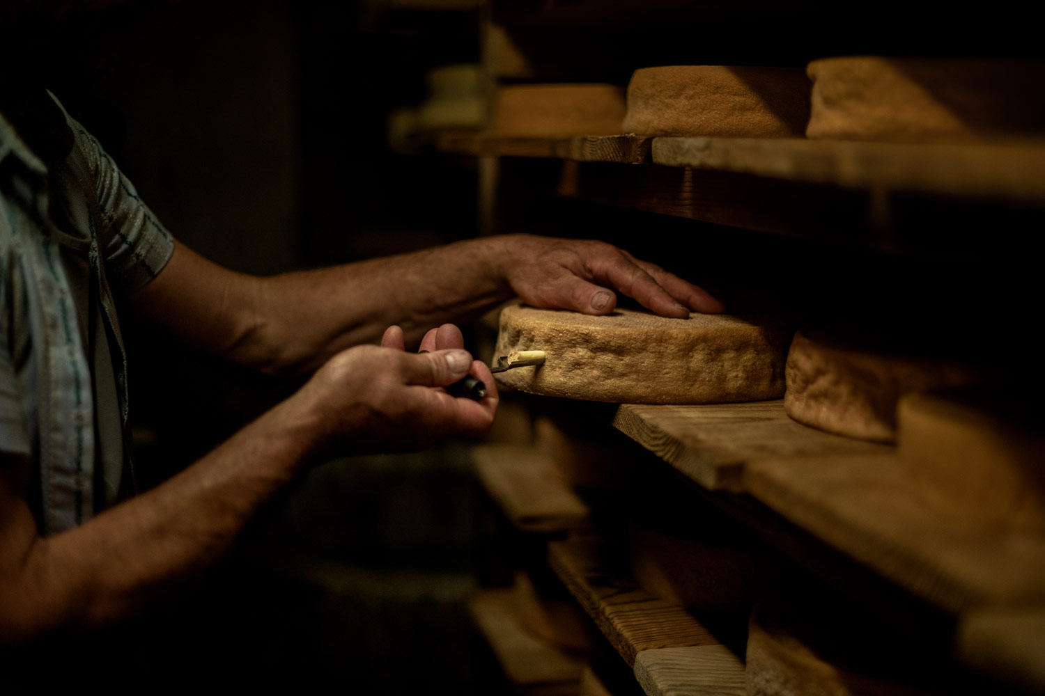 visiter une fromagerie d'alpage gruyère fribourg