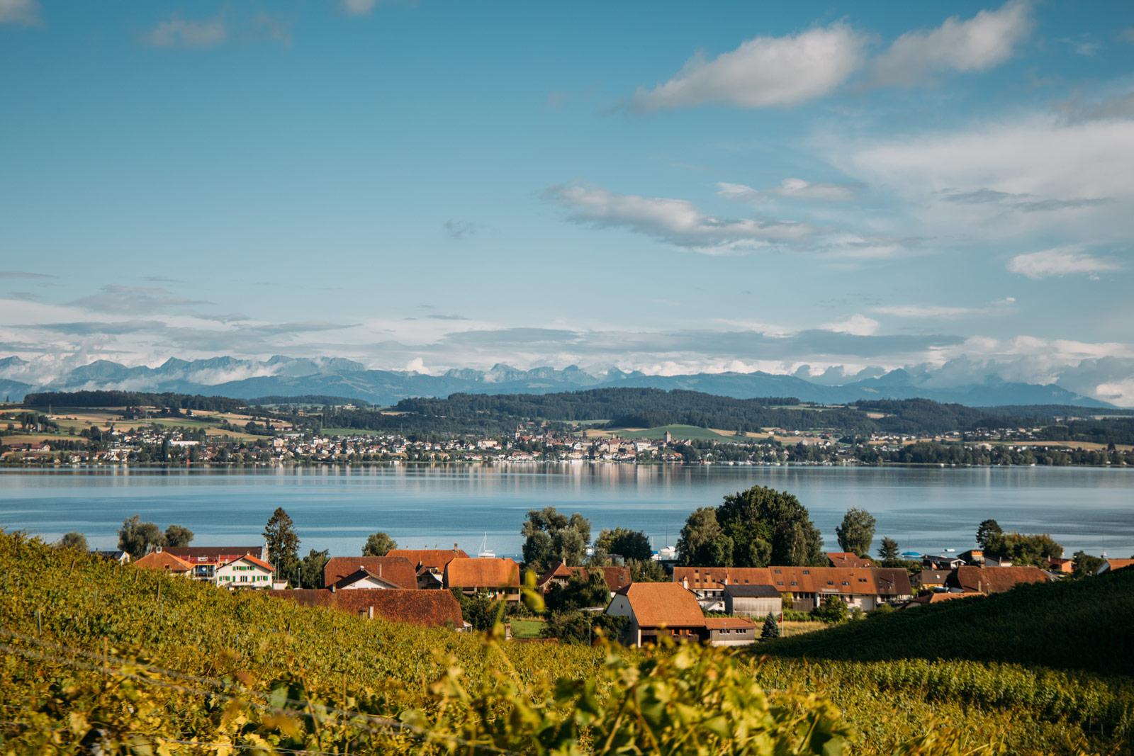 vully le plus petit vignoble suisse lac morat