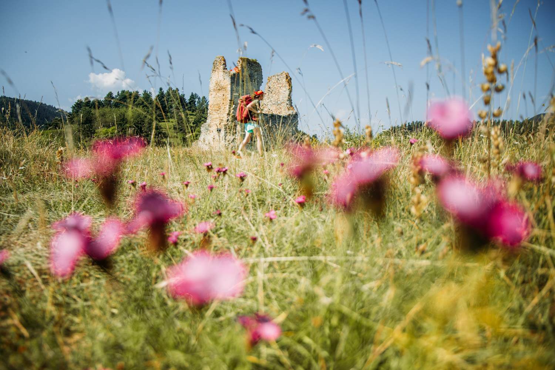 chateau cathare de Montaillou