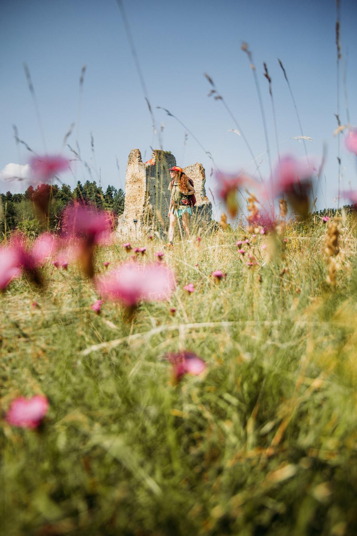 ruines du château cathare de Montaillou